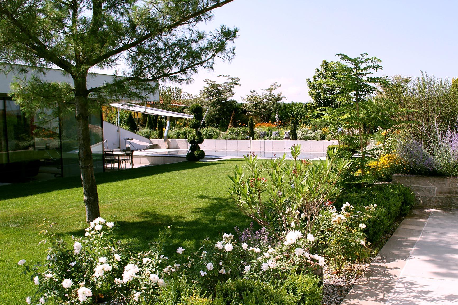 Gartengestaltung mit Poolanlage in Wien